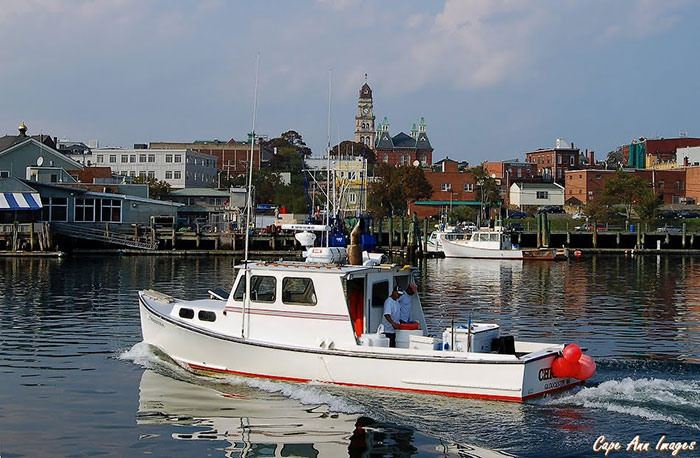 Maine Offshore Fishing Charter